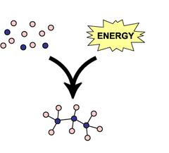 anabolic pathways