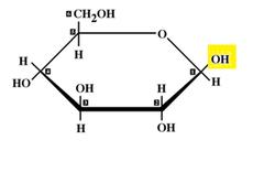 beta glucose