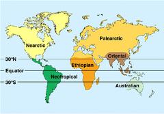 biogeographic realms