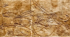 lion hunt relief (Assyrian)  (Ancient Near East)