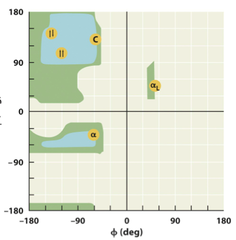 Ramachandran Diagram