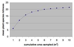 species-area curve