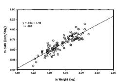 standard metabolic rate (SMR)