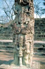 Stele D, Copan (Maya)  (Americas)