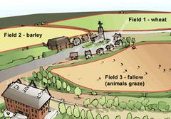 Three-field system