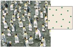 uniform dispersion