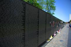 maya lin essay vietnam veterans memorial 2010-3-24 2月25日,白宫东厅,美国总统奥巴马为林璎(maya lin)披挂上紫绶带的金质奖章。表彰她作为建筑师、艺术家环保人士的卓著成就。这是美国官方给予艺术家的.